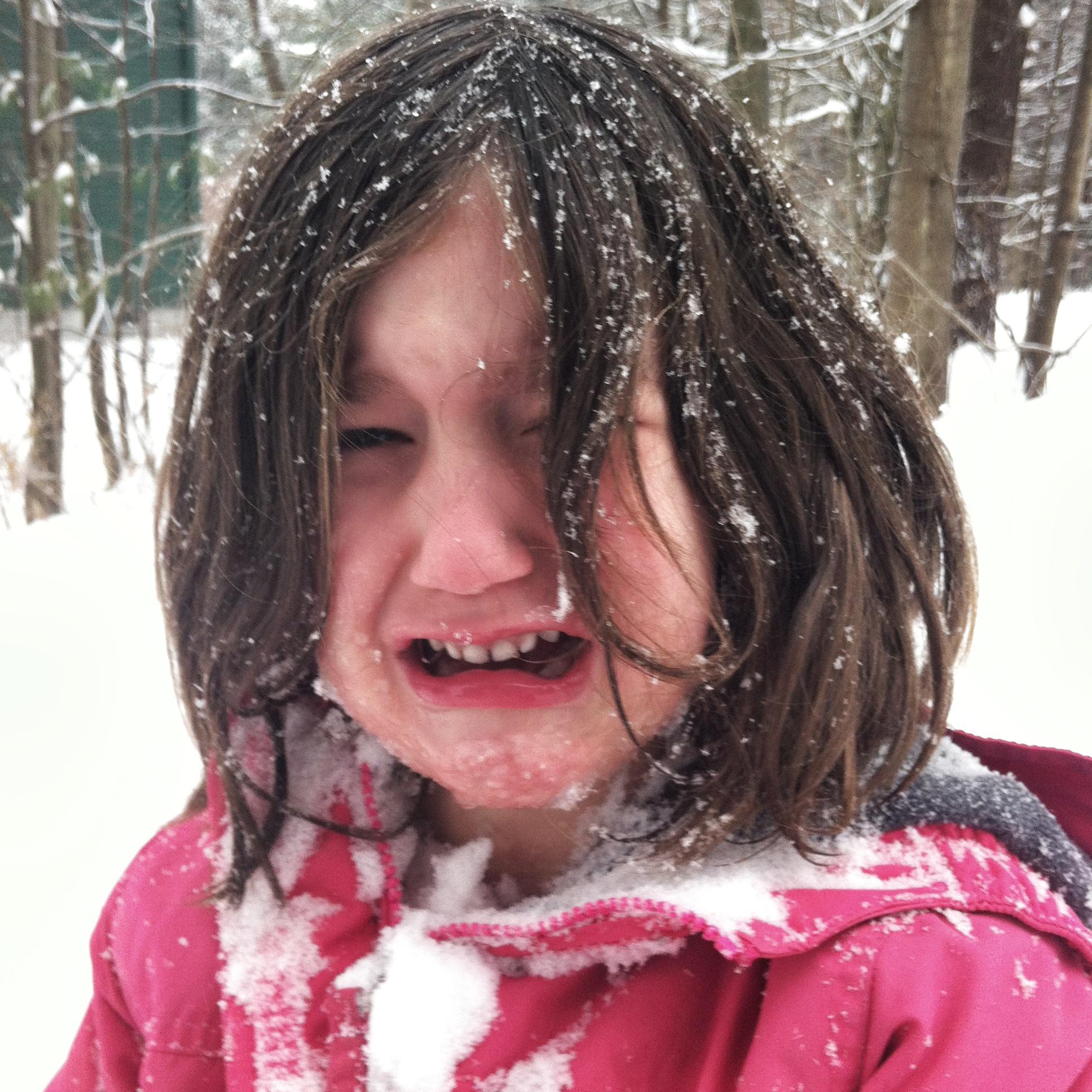 SnowyFace