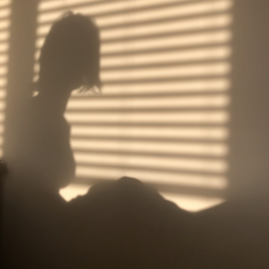 A woman's shadow is shown against a wall, there are horizontal shadows from blinds.