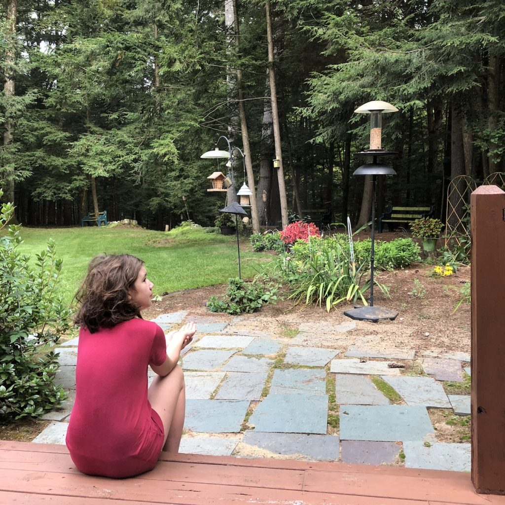 Little girl sits with her hand outstretched waiting for birds.